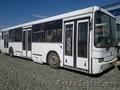 Автобус Нефаз городской