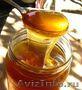 продам мёд деревенский
